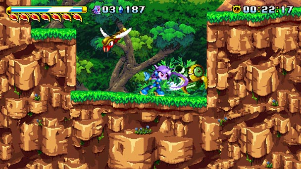 Freedom Planet (4)