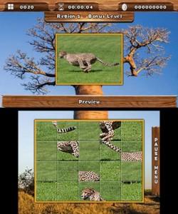 Safari Quest 3