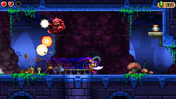 Shantae and the Pirate's Curse  (3)