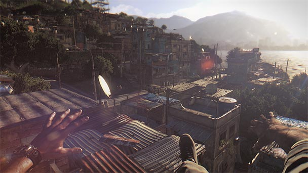 Dying Light (3)