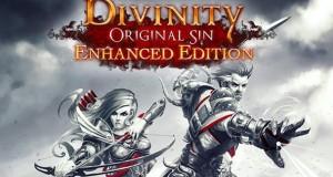Divinity Original Sin Enhanced Edition (1)